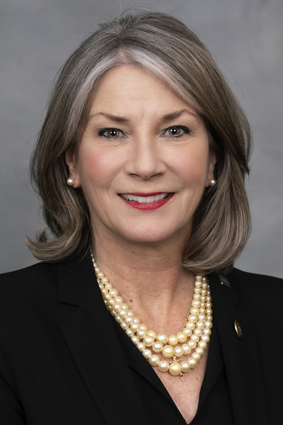 Senator Kathy Harrington - Biography - North Carolina